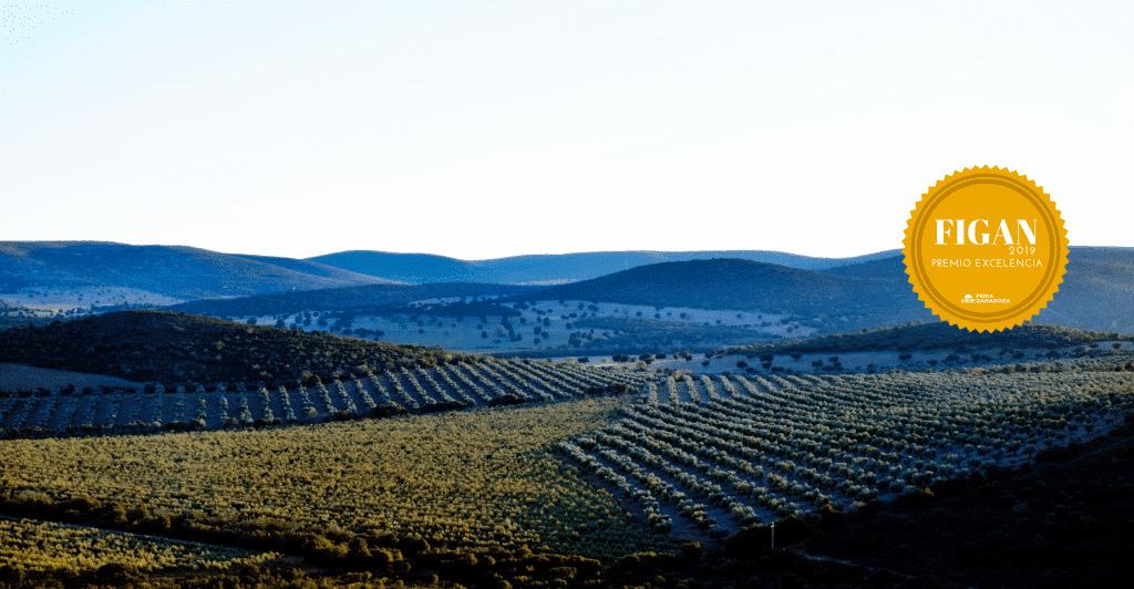 Valle de los molinos
