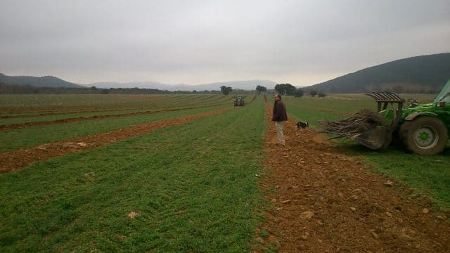 despoblación-rural