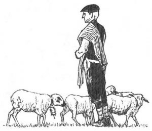 dibujo Pastor despoblacion rural